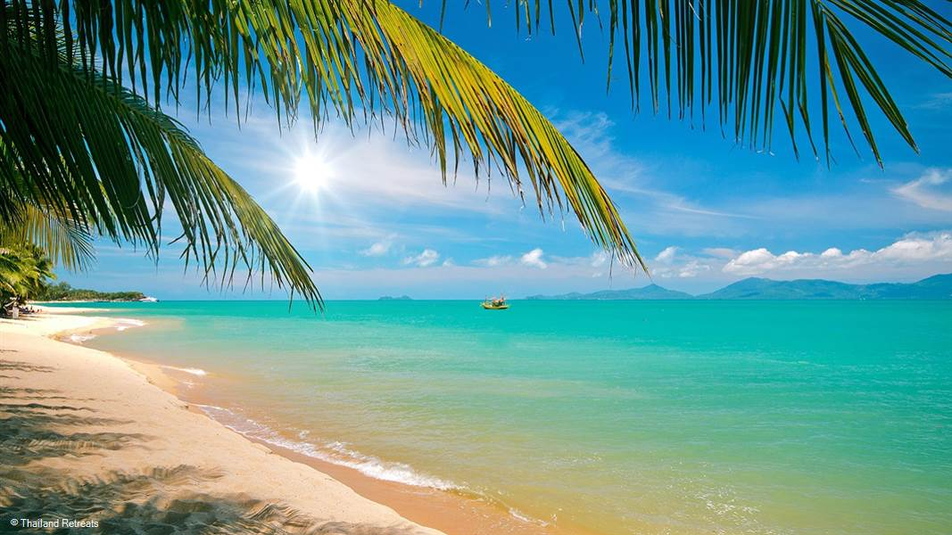 A List of some of the activities to do or places to visit in the beautiful island of Koh Phangan